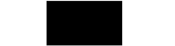 Holz Wigger Logo